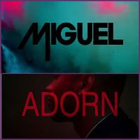 Cover Miguel [US] - Adorn